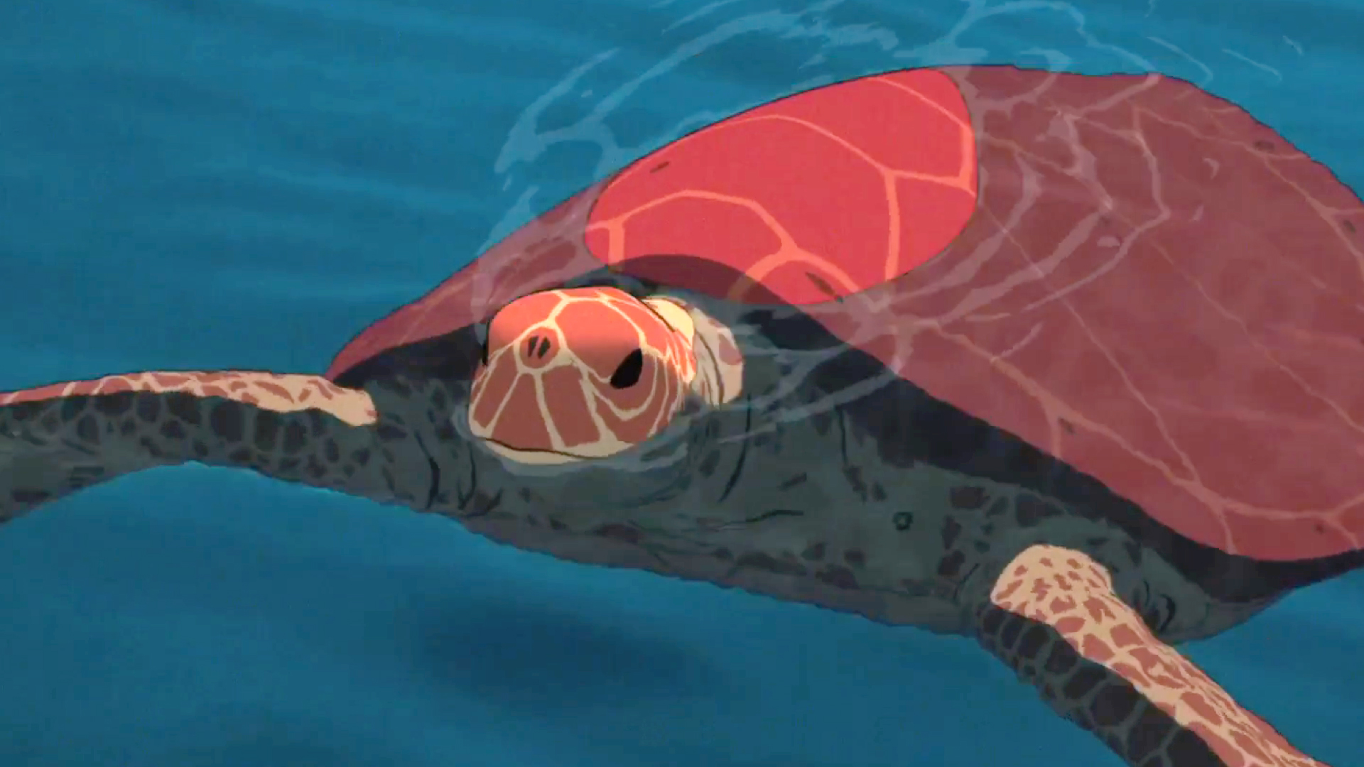 Flick Hunter Film Review The Red Turtle