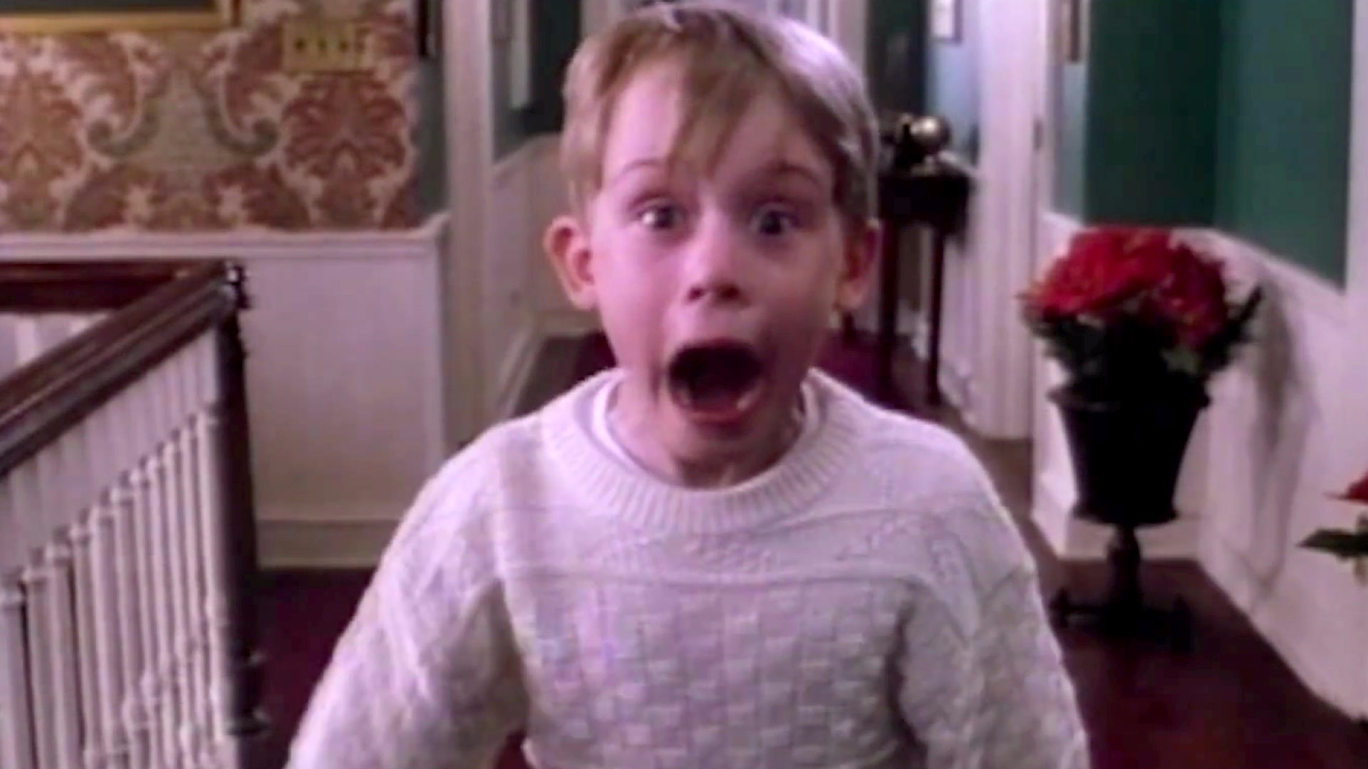 home alone 4 2002 rotten tomatoes - HD1920×1080