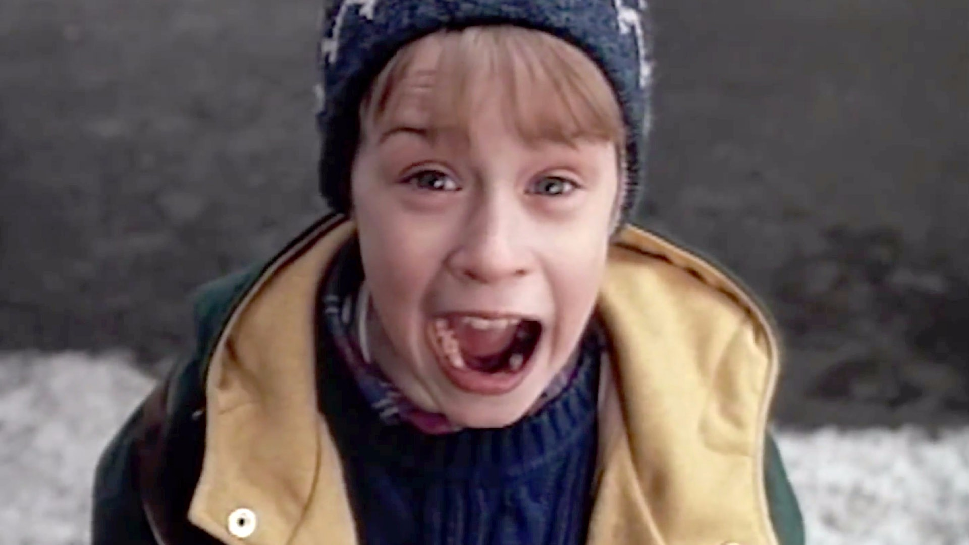 Home Alone 2 Lost in New York Cast and Crew Cast s
