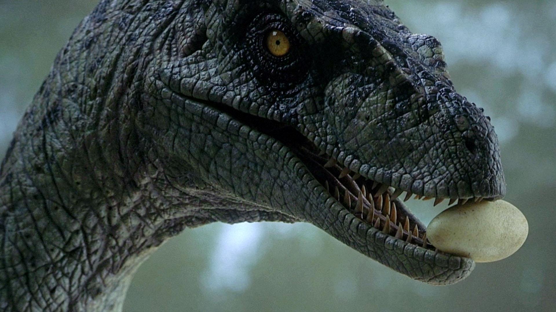 best Jurassic Park III images on Pinterest Jurassic park