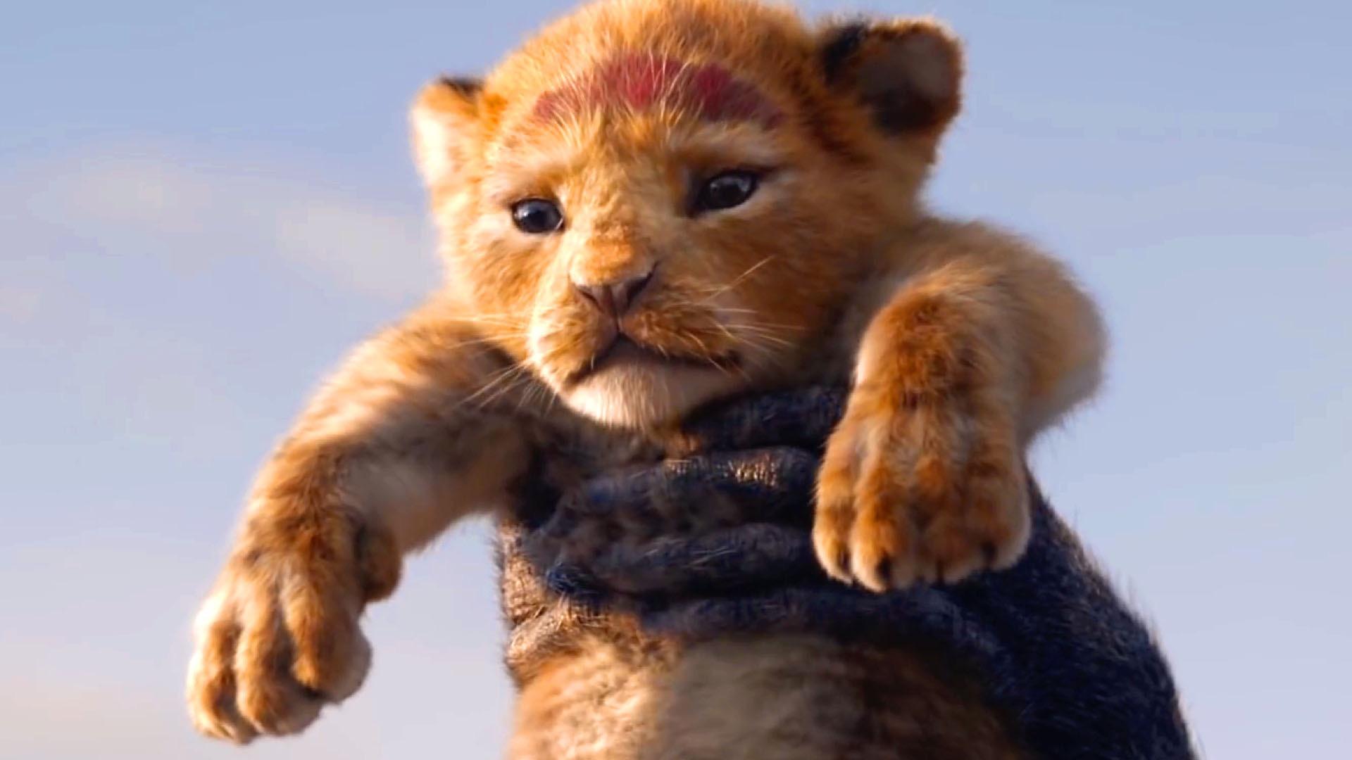 the lion king  2019   the lion king teaser trailer 1